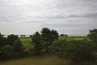 A cloudy day overlooking a grassy plain with trees