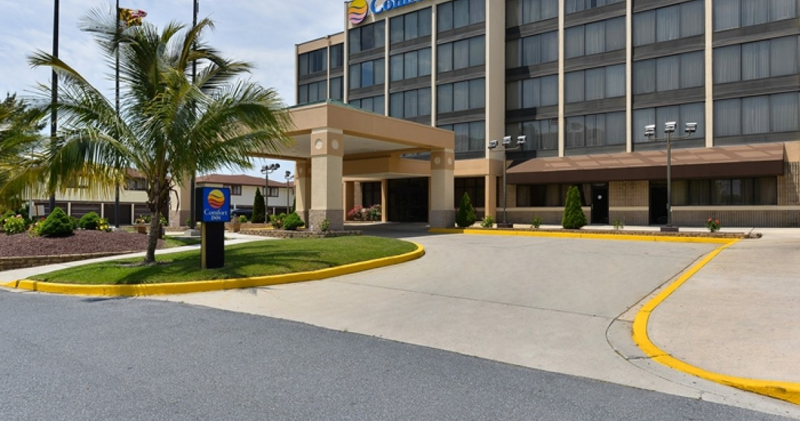 The front of the Comfort Inn Gold Coast with a palm tree