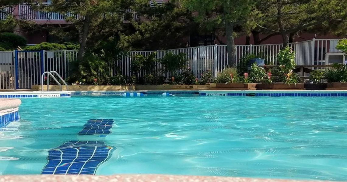 An outdoor pool with trees and a fence in the background